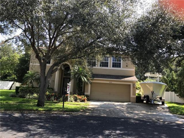 813 Woodcarver Lane, Brandon, FL 33510 (MLS #T2904874) :: The Duncan Duo & Associates