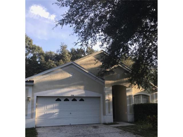 2516 Deer Forest Drive, Lutz, FL 33559 (MLS #T2904903) :: The Duncan Duo & Associates