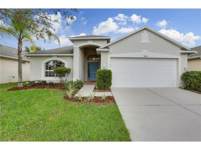31203 Whinsenton Drive, Wesley Chapel, FL 33543 (MLS #T2904905) :: Griffin Group