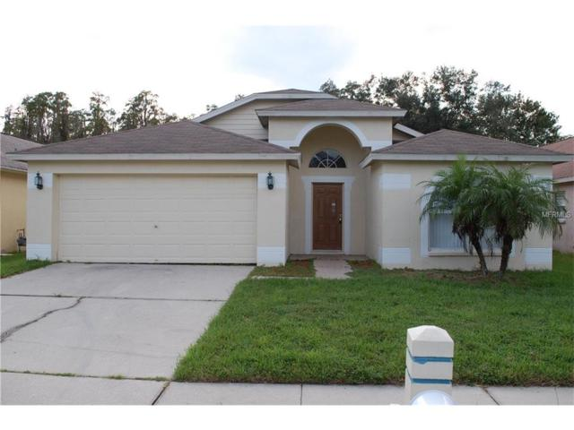 31304 Wrencrest Drive, Wesley Chapel, FL 33543 (MLS #T2904906) :: The Duncan Duo & Associates