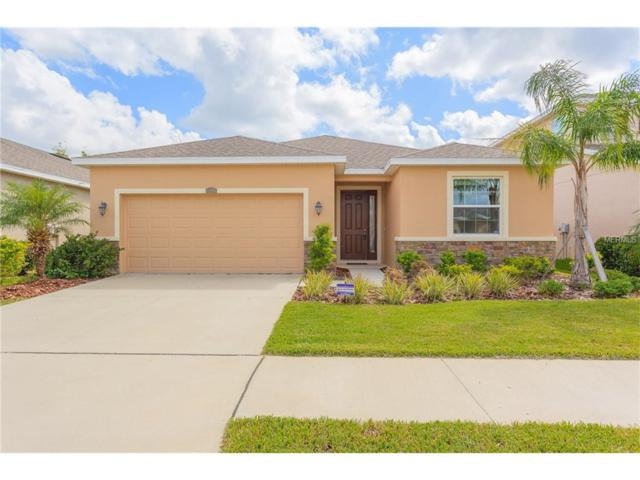 11604 Warren Oaks Place, Riverview, FL 33578 (MLS #T2904916) :: KELLER WILLIAMS CLASSIC VI