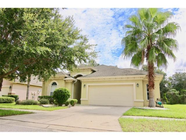 4515 Fieldview Circle, Zephyrhills, FL 33545 (MLS #T2904949) :: Team Bohannon Keller Williams, Tampa Properties