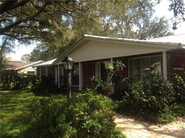 12040 Riverhills Drive, Tampa, FL 33617 (MLS #T2904964) :: RealTeam Realty