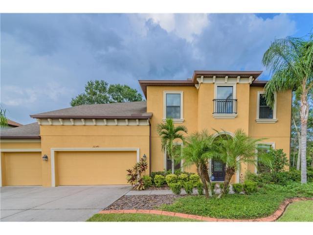 22345 Oakville Drive, Land O Lakes, FL 34639 (MLS #T2904992) :: Cartwright Realty