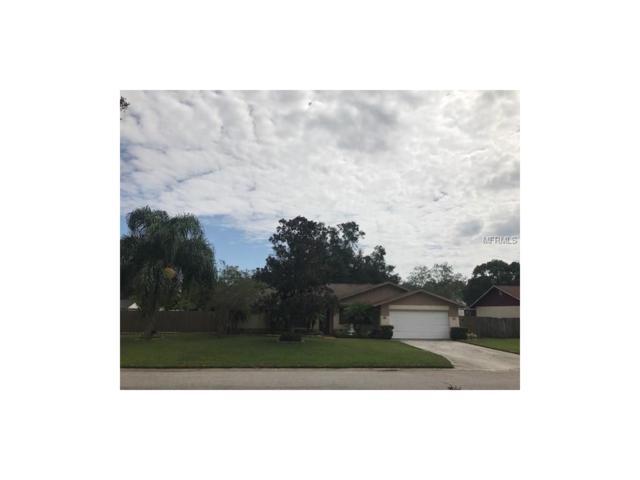 1631 Dogwood Lane, Brandon, FL 33510 (MLS #T2905042) :: Griffin Group
