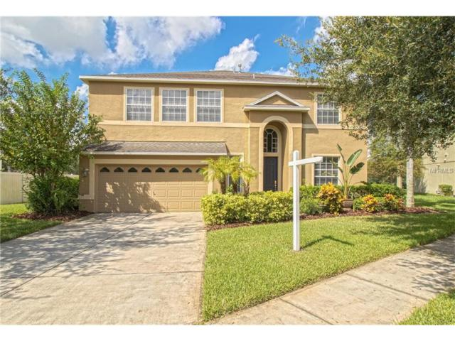 812 Woodcarver Lane, Brandon, FL 33510 (MLS #T2905051) :: KELLER WILLIAMS CLASSIC VI