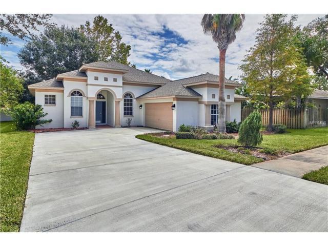 4136 Sinclair Pl, Land O Lakes, FL 34639 (MLS #T2905062) :: Delgado Home Team at Keller Williams