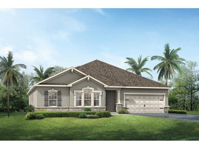 12330 Prairie Valley Lane, Riverview, FL 33579 (MLS #T2905091) :: Delgado Home Team at Keller Williams