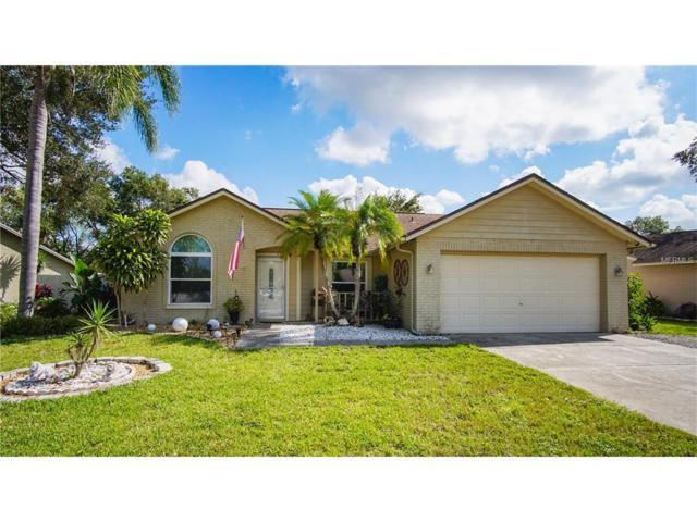 1702 Pintail Court, Lutz, FL 33549 (MLS #T2905094) :: Delgado Home Team at Keller Williams