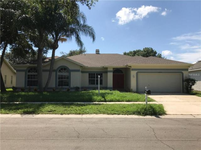 18907 Edinborough Way, Tampa, FL 33647 (MLS #T2905116) :: Delgado Home Team at Keller Williams