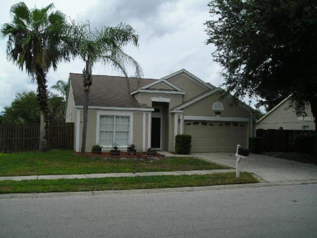 26827 Carla Place, Lutz, FL 33559 (MLS #T2905139) :: Delgado Home Team at Keller Williams