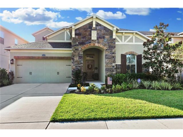 4392 Vermillion Sky Drive, Wesley Chapel, FL 33544 (MLS #T2905146) :: Griffin Group
