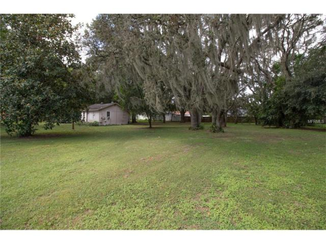 1514 S Mulrennan Road, Valrico, FL 33594 (MLS #T2905161) :: Griffin Group