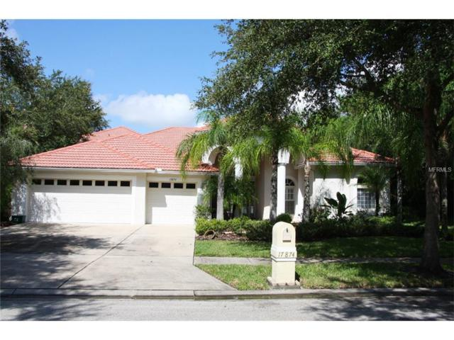17874 Arbor Greene Drive, Tampa, FL 33647 (MLS #T2905168) :: Team Bohannon Keller Williams, Tampa Properties