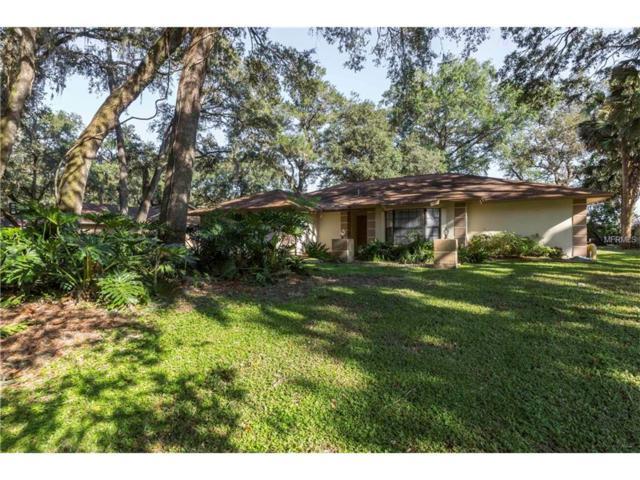 412 Bryan Oak Avenue, Brandon, FL 33511 (MLS #T2905216) :: Griffin Group