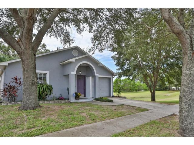 2415 Camden Oaks Place, Valrico, FL 33594 (MLS #T2905254) :: Griffin Group