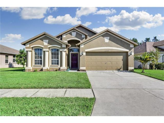 22729 Beltrees Court, Land O Lakes, FL 34639 (MLS #T2905271) :: Griffin Group