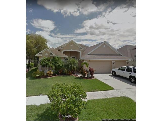 7005 Cohasset Circle, Riverview, FL 33578 (MLS #T2905304) :: Team Bohannon Keller Williams, Tampa Properties