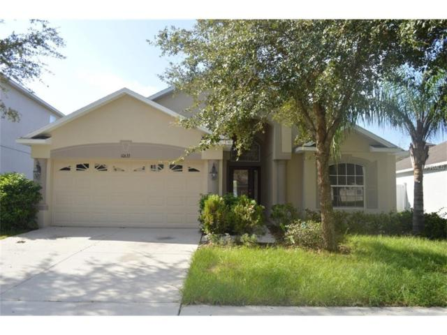 10633 Lucaya Drive, Tampa, FL 33647 (MLS #T2905368) :: Griffin Group