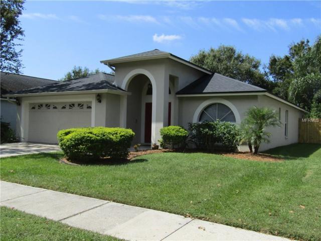 2009 Thornbush Place, Brandon, FL 33511 (MLS #T2905412) :: Griffin Group