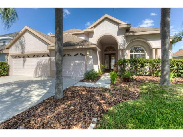 10234 Deercliff Drive, Tampa, FL 33647 (MLS #T2905553) :: Team Bohannon Keller Williams, Tampa Properties