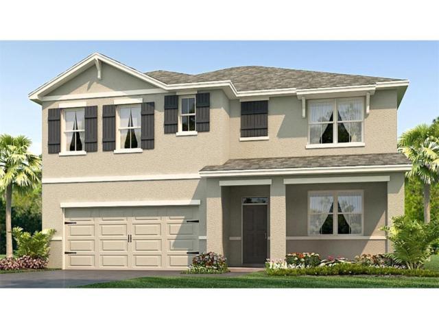 5383 Magdelene Way, Zephyrhills, FL 33541 (MLS #T2905862) :: The Lockhart Team