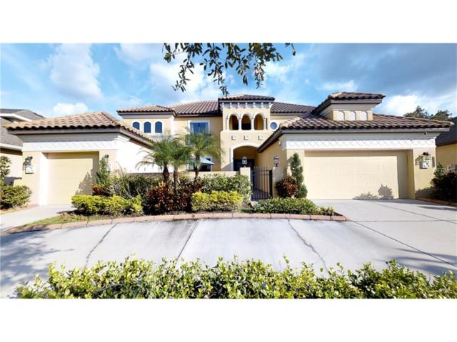 20027 Outpost Point Drive, Tampa, FL 33647 (MLS #T2905968) :: Team Bohannon Keller Williams, Tampa Properties