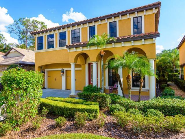 8261 Dunham Station Drive, Tampa, FL 33647 (MLS #T2905988) :: Team Bohannon Keller Williams, Tampa Properties