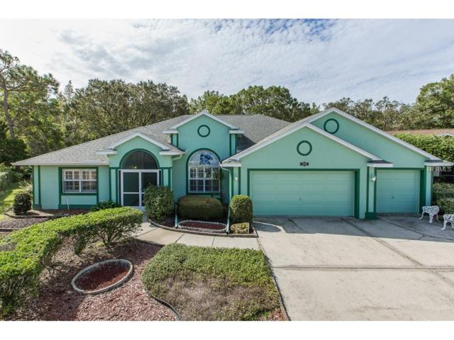 1340 Saffron Way, Trinity, FL 34655 (MLS #T2906405) :: Cartwright Realty