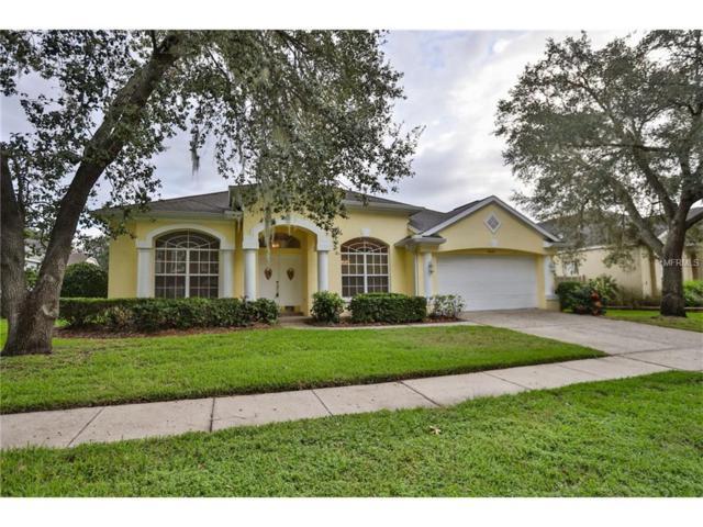 3609 Warmspring Way, Valrico, FL 33596 (MLS #T2906472) :: Arruda Family Real Estate Team