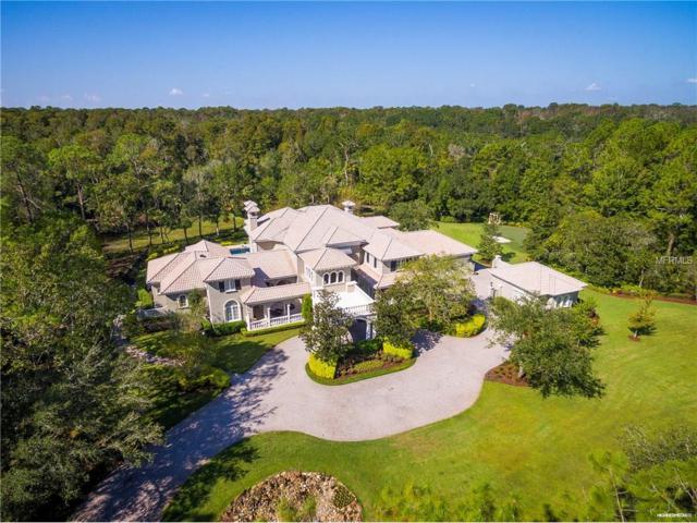 4901 Turnbury Wood Drive, Tampa, FL 33647 (MLS #T2906525) :: Ideal Florida Real Estate