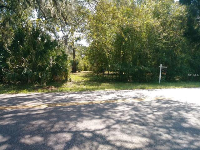 7424 N Mobley Road, Odessa, FL 33556 (MLS #T2906654) :: Griffin Group