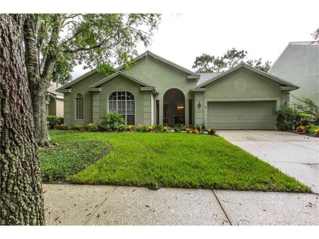 4940 Ebensburg Drive, Tampa, FL 33647 (MLS #T2907418) :: Arruda Family Real Estate Team