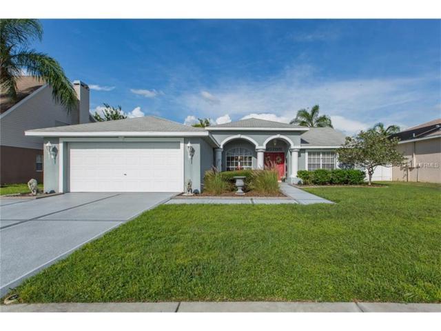 7828 Primula Lane, New Port Richey, FL 34654 (MLS #T2907441) :: Team Virgadamo