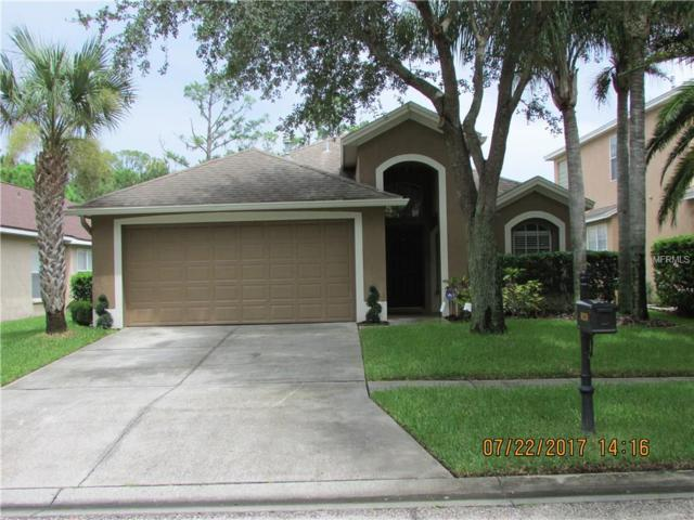 10239 Woodford Bridge Street, Tampa, FL 33626 (MLS #T2907577) :: The Duncan Duo & Associates