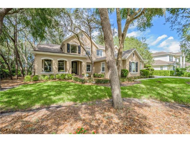 17816 Mission Oak Drive, Lithia, FL 33547 (MLS #T2907578) :: Team Bohannon Keller Williams, Tampa Properties