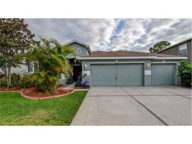 8820 N River Road, Tampa, FL 33635 (MLS #T2907693) :: The Duncan Duo & Associates