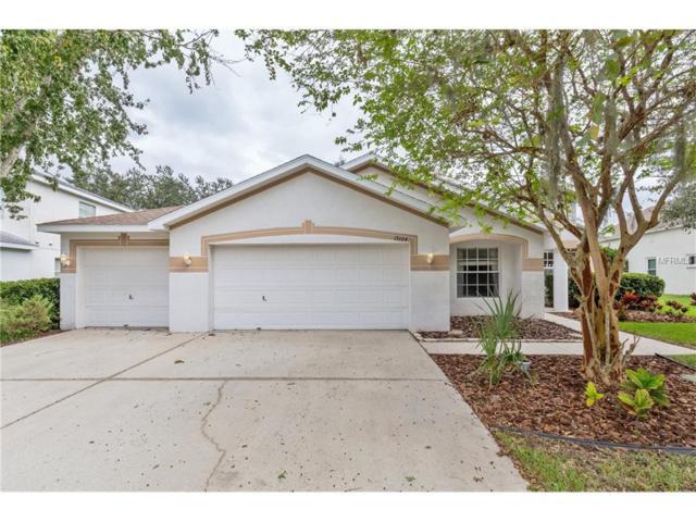 15104 Heronglen Drive, Lithia, FL 33547 (MLS #T2907887) :: Arruda Family Real Estate Team