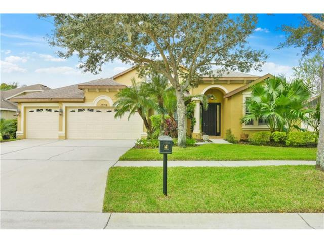 15718 Ibisridge Drive, Lithia, FL 33547 (MLS #T2907892) :: Arruda Family Real Estate Team