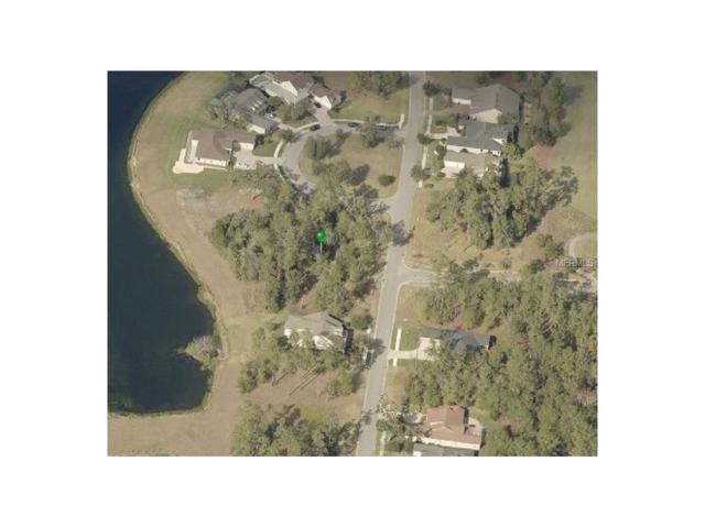 5829 Summit View Drive, Brooksville, FL 34601 (MLS #T2907906) :: The Lockhart Team