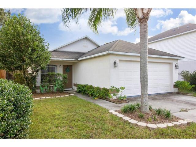 30446 Birdhouse Drive, Wesley Chapel, FL 33545 (MLS #T2908000) :: The Duncan Duo & Associates