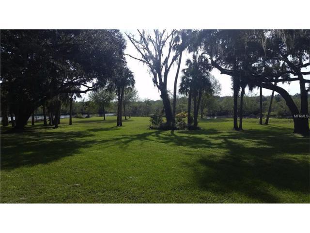 0 John Cressler Drive, Seffner, FL 33584 (MLS #T2908084) :: Arruda Family Real Estate Team