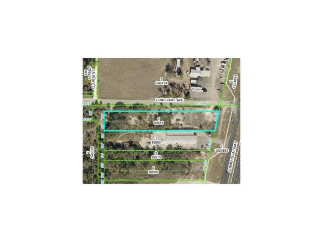 Long Lake Avenue, Weeki Wachee, FL 34613 (MLS #T2908289) :: Mark and Joni Coulter | Better Homes and Gardens