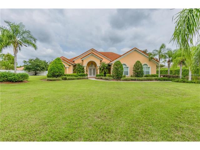 10603 Echo Lake Drive, Odessa, FL 33556 (MLS #T2908340) :: Team Bohannon Keller Williams, Tampa Properties