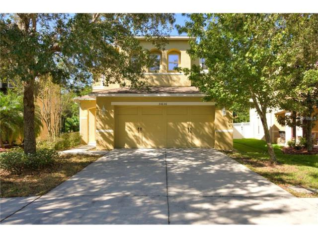 31636 Spoonflower Circle, Wesley Chapel, FL 33545 (MLS #T2908351) :: Team Bohannon Keller Williams, Tampa Properties