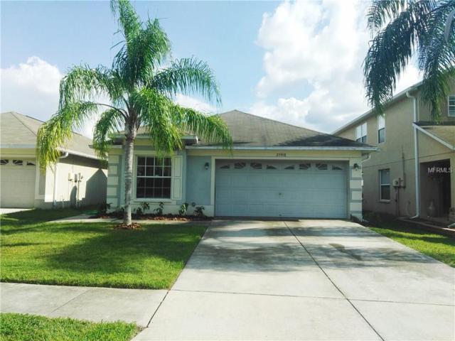 25918 Crippen Drive, Land O Lakes, FL 34639 (MLS #T2908426) :: Team Bohannon Keller Williams, Tampa Properties