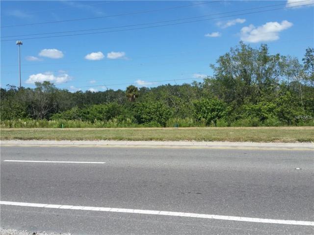 Big Bend Road, Gibsonton, FL 33534 (MLS #T2908427) :: Team Pepka