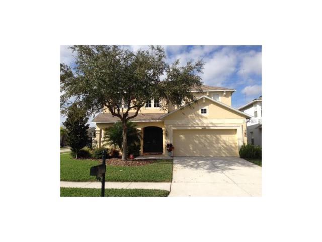 3537 Olde Lanark Drive, Land O Lakes, FL 34638 (MLS #T2908443) :: Team Bohannon Keller Williams, Tampa Properties