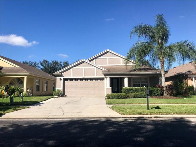 2422 Rosehaven Drive, Wesley Chapel, FL 33544 (MLS #T2908461) :: Arruda Family Real Estate Team