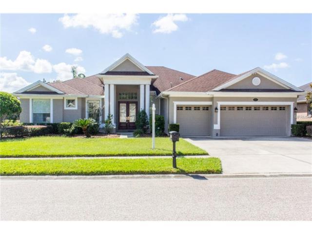 16143 Ivy Lake Drive, Odessa, FL 33556 (MLS #T2908465) :: Team Bohannon Keller Williams, Tampa Properties
